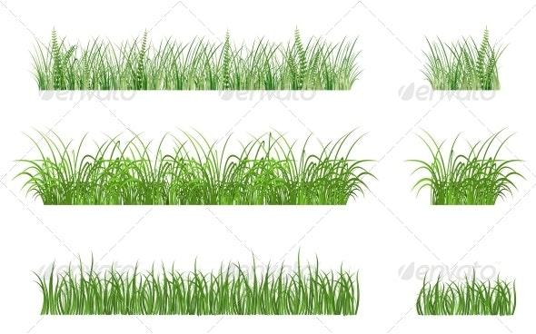 Green Grass Patterns - Flowers & Plants Nature
