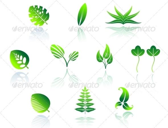 Set of Leaf Icons - Decorative Symbols Decorative