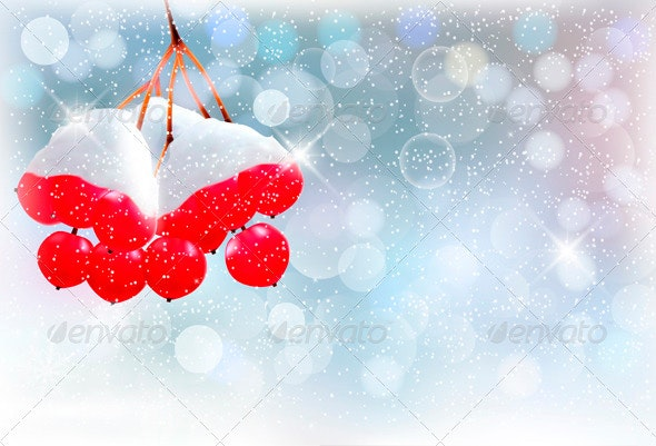 Holiday Background with Branch and Red Berries - Backgrounds Decorative