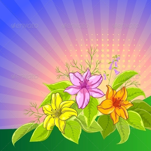 Flower background, lily and sun - Flowers & Plants Nature