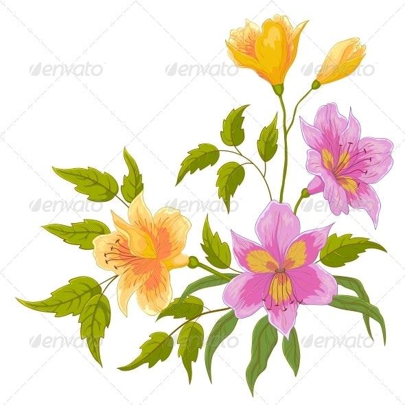 Flower Alstroemeria - Flowers & Plants Nature