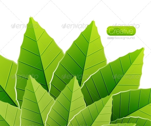 Green leaves nature background - Backgrounds Decorative