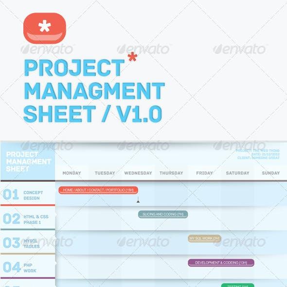 Premium Project Management Sheet