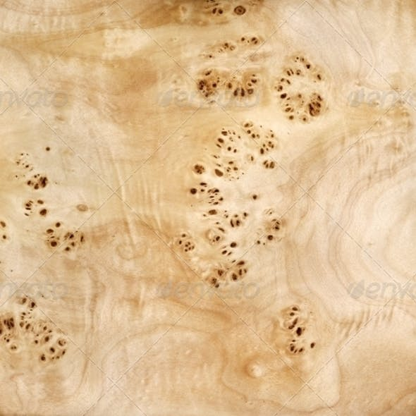 Wood, veneer, root of a poplar