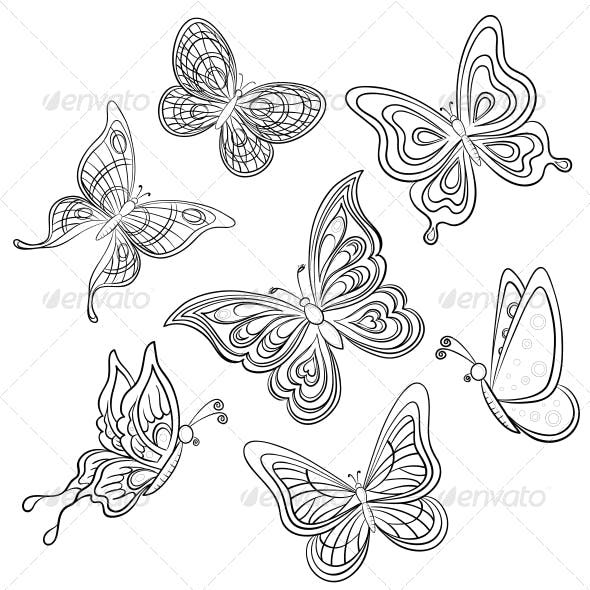 Butterfly Contours