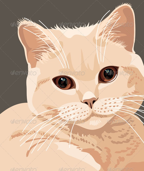 Vector view of british lilac cat closeup - Animals Characters