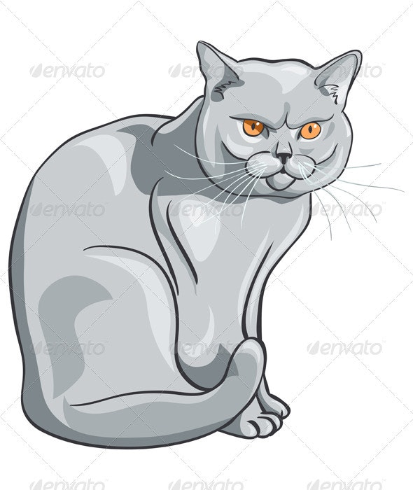 Vector british blue cat sits and looks seriously - Animals Characters