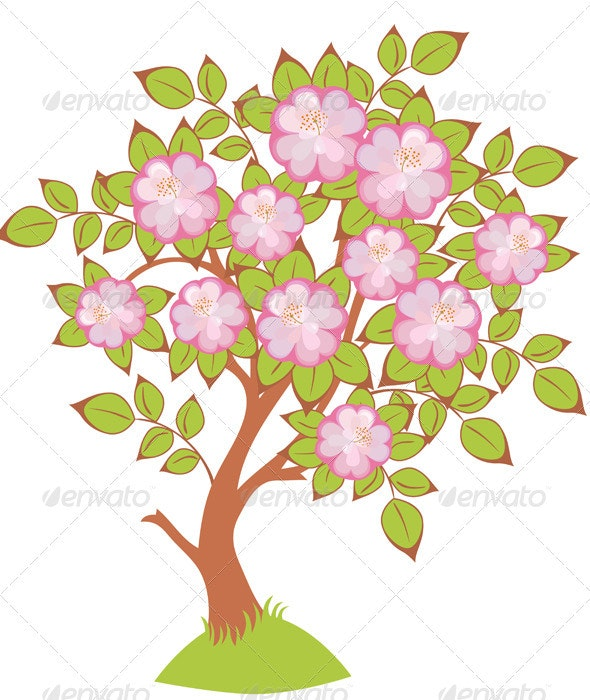 Vector of cherry blossoms - Flowers & Plants Nature