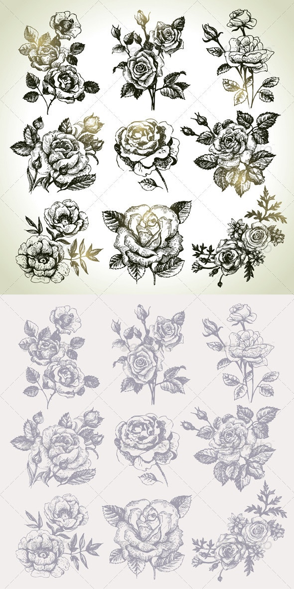 Hand Drawn Floral Set - Flowers & Plants Nature