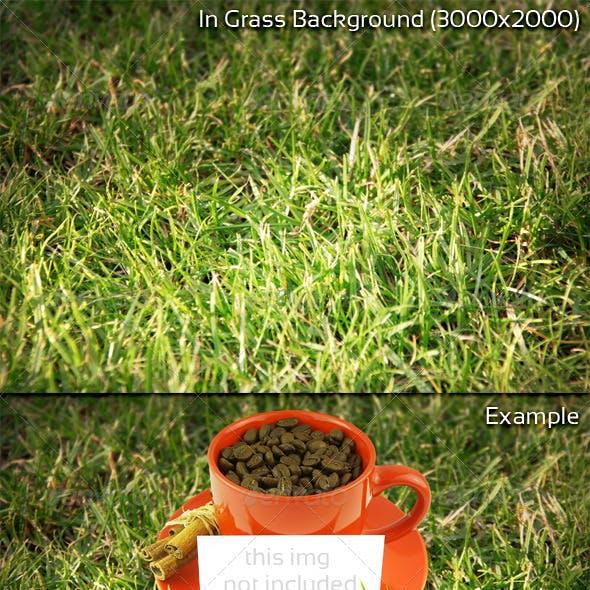 In Grass Background