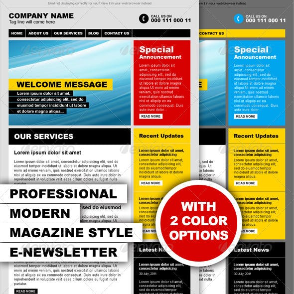 Professional Modern Magazine Style E-newsletter