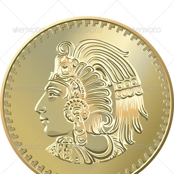 Vector Mexican coin with the image of the Indian