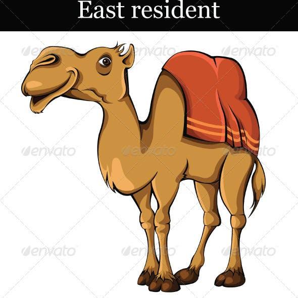East_resident