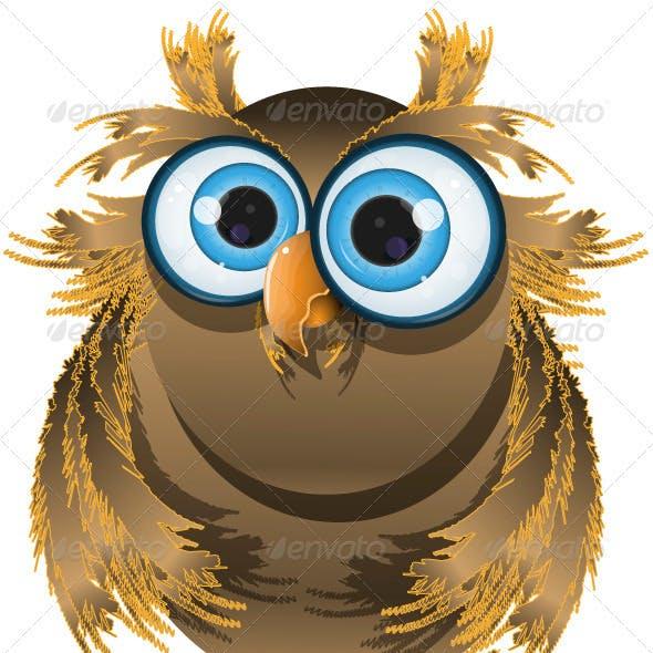goggle-eyed wise owl
