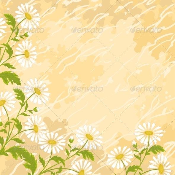 Background Chamomile Flowers - Backgrounds Decorative