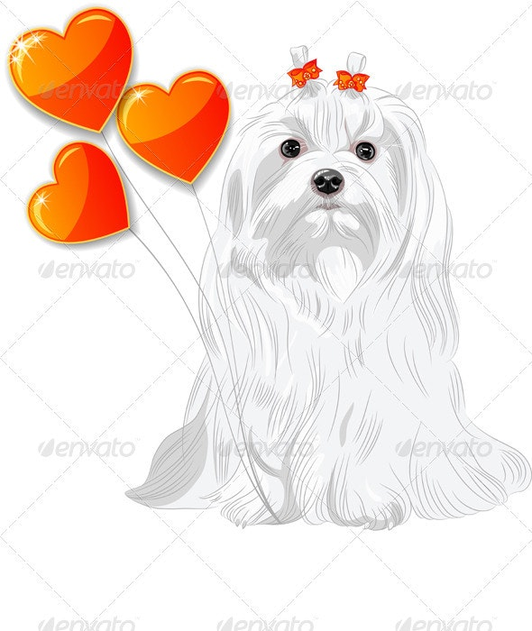 Valentine Card with Dog Maltese and Hearts - Valentines Seasons/Holidays