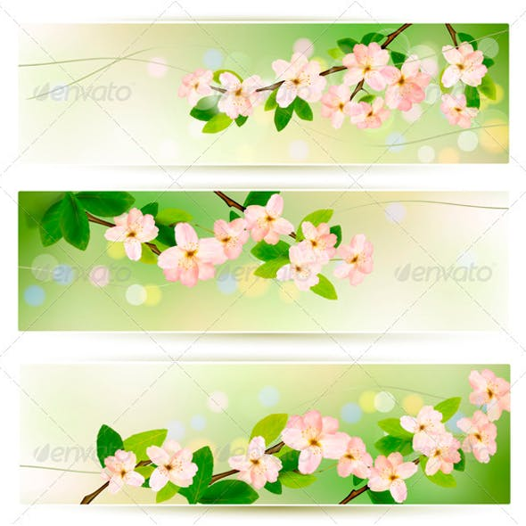 Three Spring Banners with Blossoming Tree Brunch