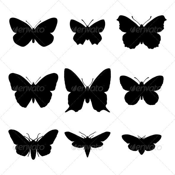 Butterfly and moth silhouettes