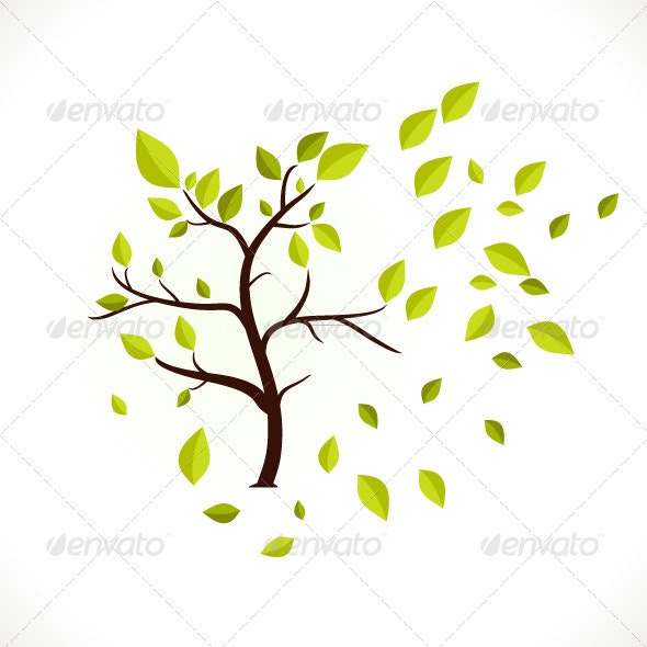 Tree - Nature Conceptual