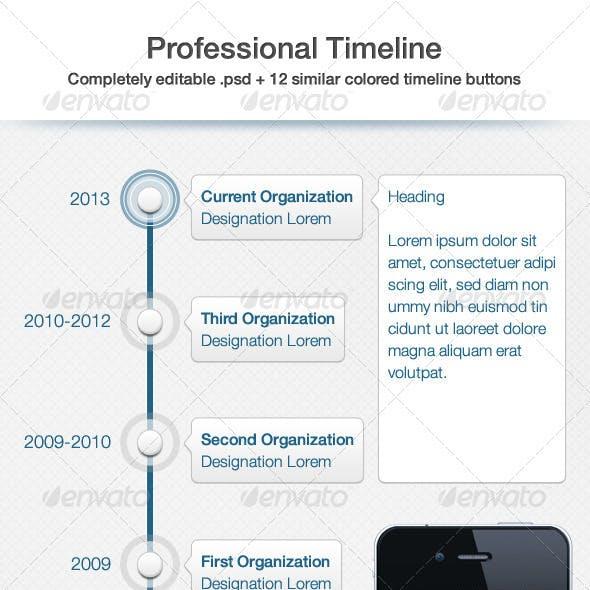 Professional Timeline UI