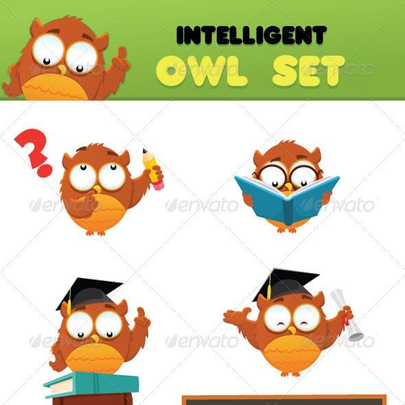 Intelligent Owl Set