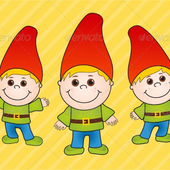 Boy Gnome