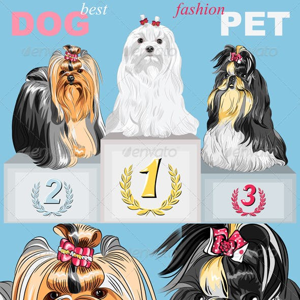 Vector Fashion Dog Champion on the Podium