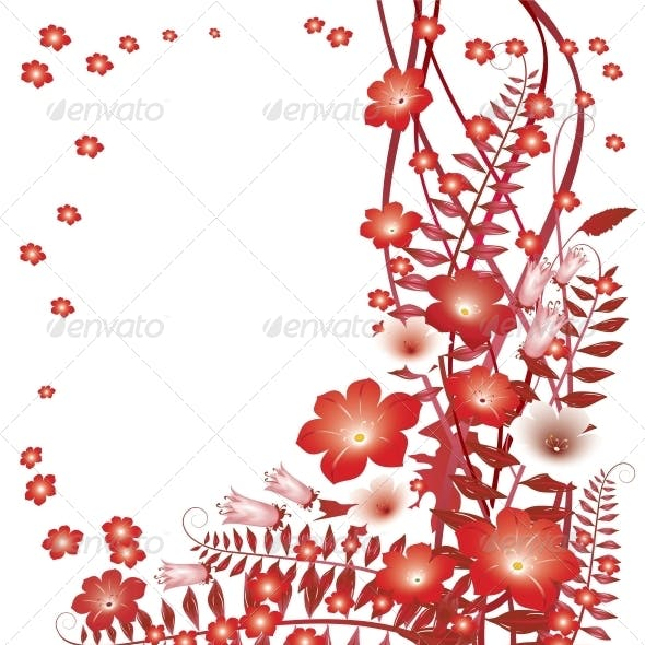 Delicate Red Flowers on White Background