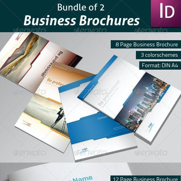 Bundle of 2 Business Brochures