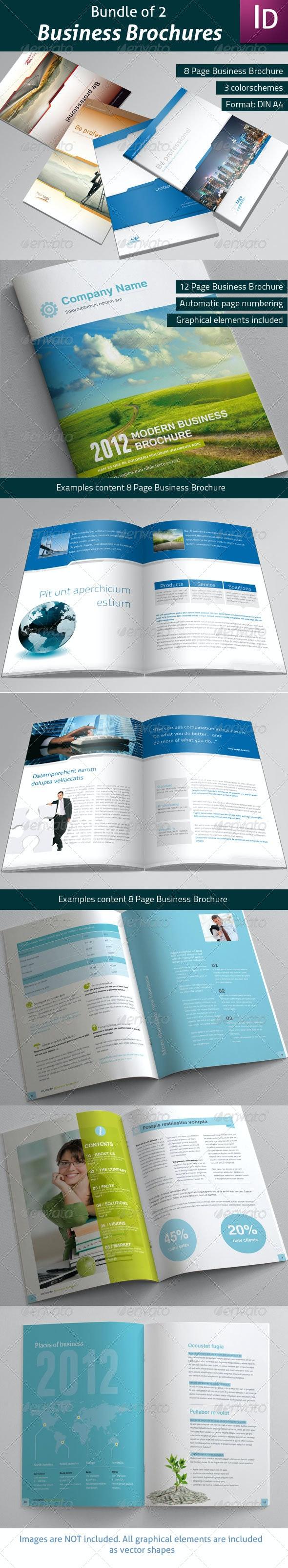 Bundle of 2 Business Brochures - Corporate Brochures