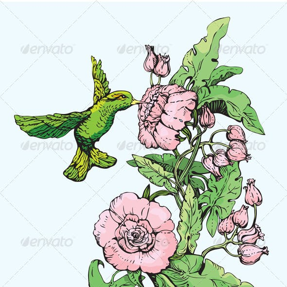 Colibri and Flowers. Hand Drawn Sketch.
