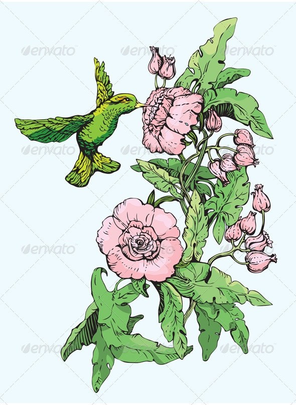 Colibri and Flowers. Hand Drawn Sketch.  - Flowers & Plants Nature
