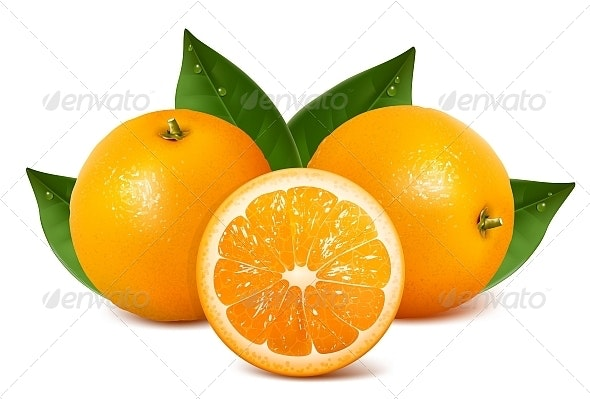 Vector Fresh Ripe Oranges with Leaves - Food Objects
