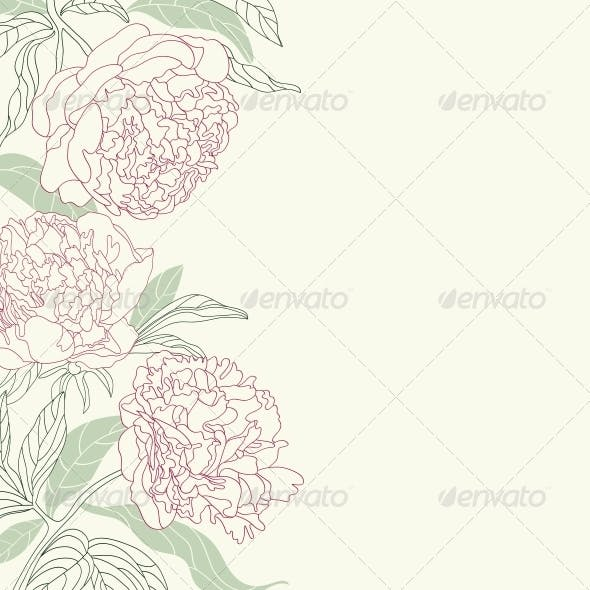 Hand Drawing Tenderness Peony Flowers Background