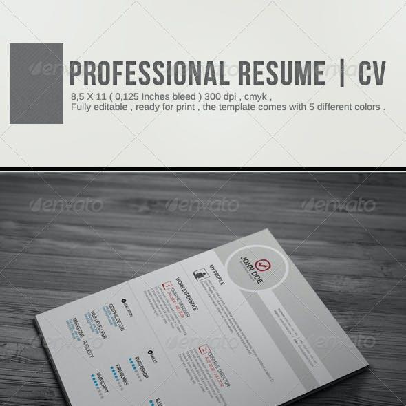 Professional Resume | CV