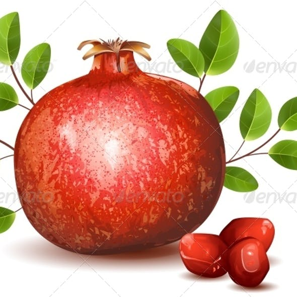 Ripe Pomegranate with Leaves