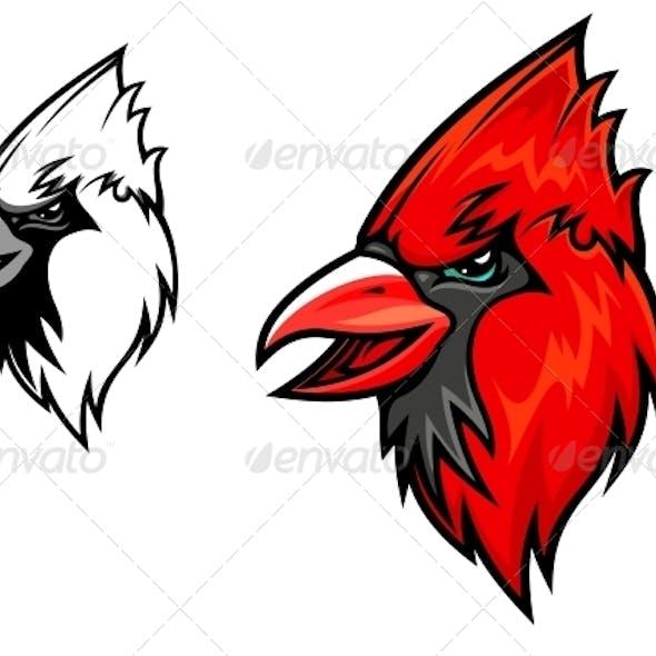 Cardinal Birds