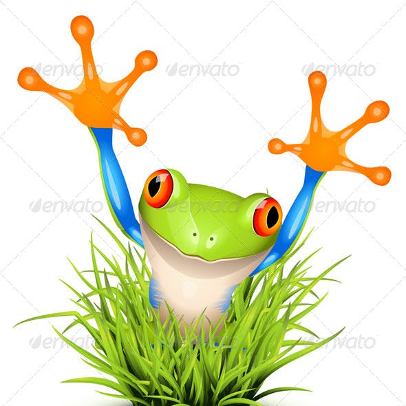 Tree Frog on Grass