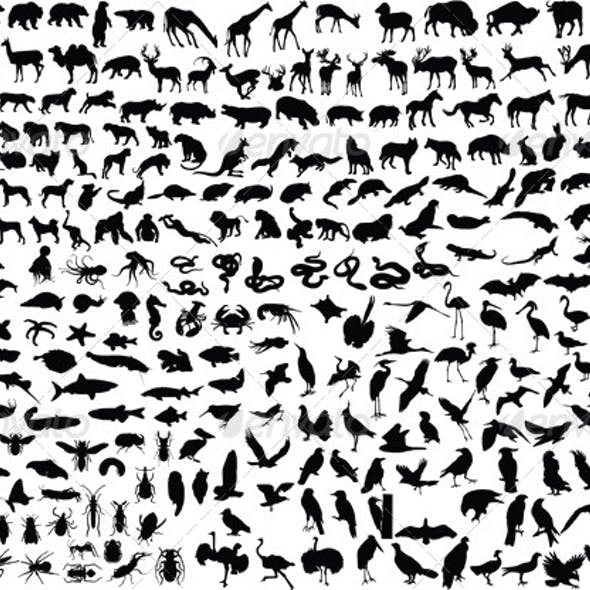 300 Animal Silhouettes