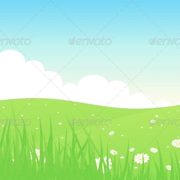Beautiful Green Fields Landscape