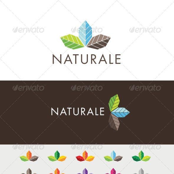 Naturale Colors Logo