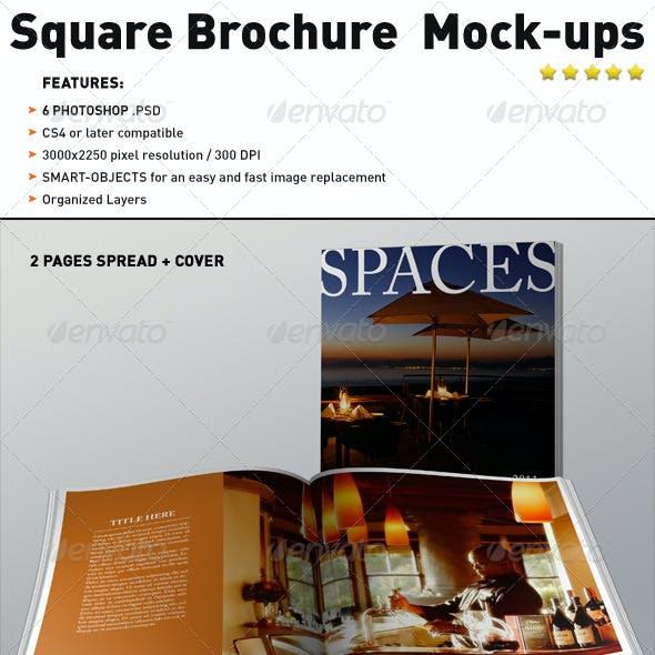 Realistic Square Brochure Mock-ups Templates