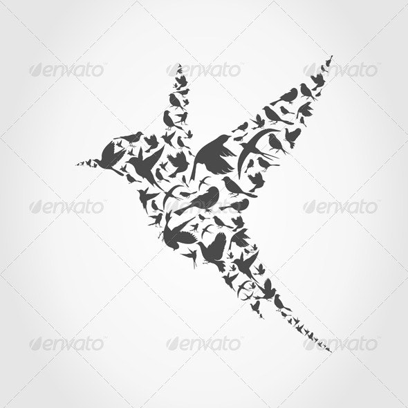Birdie - Animals Characters