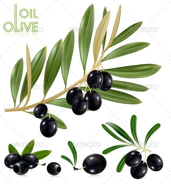 Black Olives - Food Objects