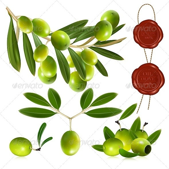 Green Olives - Food Objects