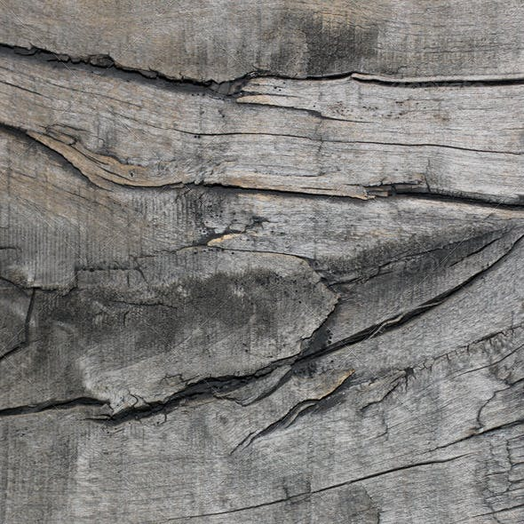 Old Wood Texure 02