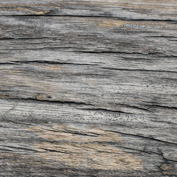 Old Wood Texure 06