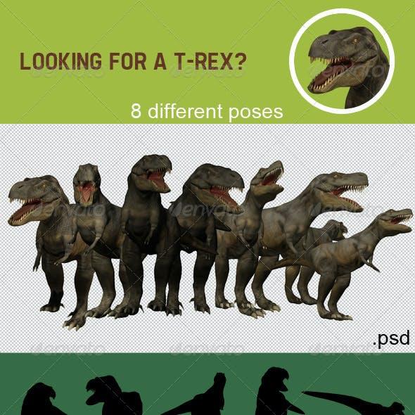 T-Rex Renders