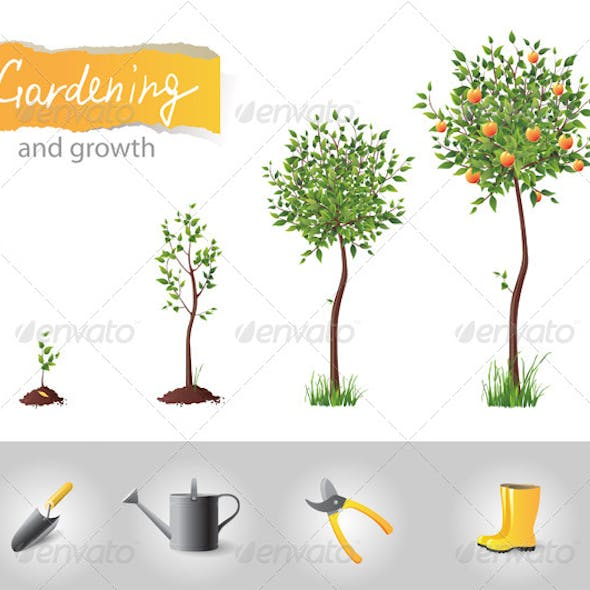 Gardening and Growing Tree
