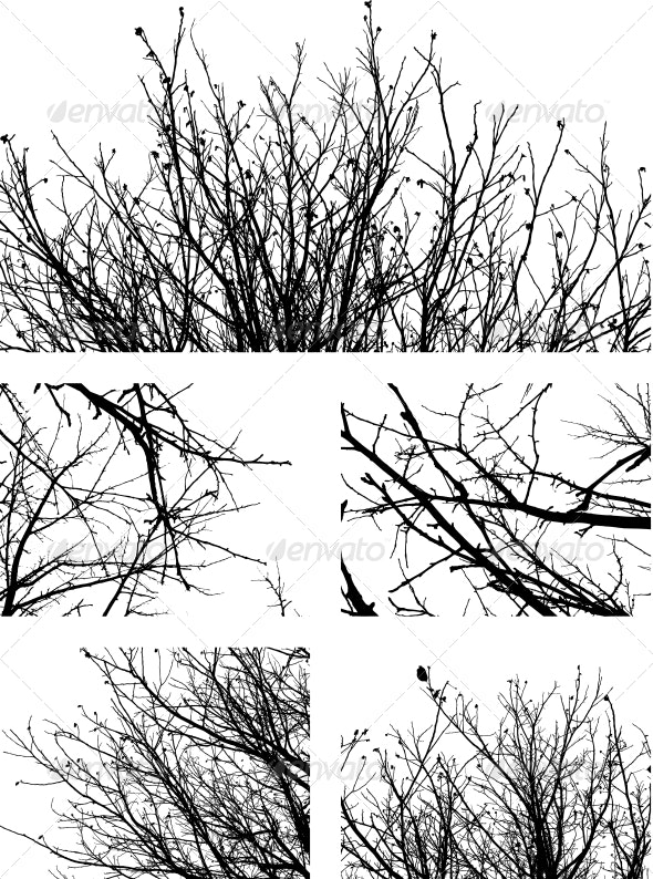Silhouettes of Branches - Backgrounds Decorative
